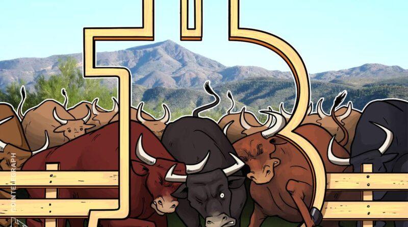 Bitcoin bull run expected as 'exhausted' bears sell at a loss